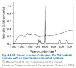 Fig4.1.10 mummified tissue 3