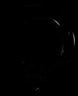 ZEN image aug13